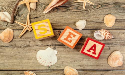 Wat is SEA en wat kan het voor mijn bedrijf doen?